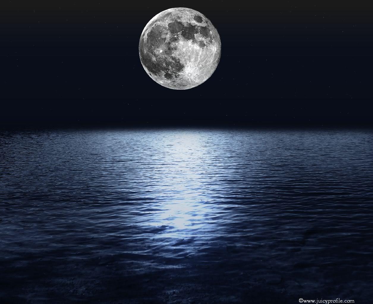 calendar luna plina