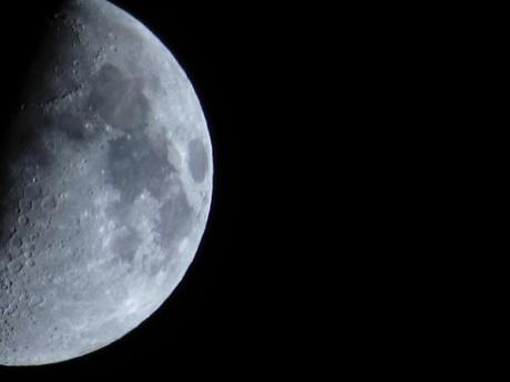 Moon by Steve Niles