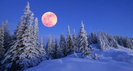 jan moon