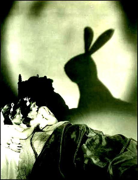 evil-bunny-2_a