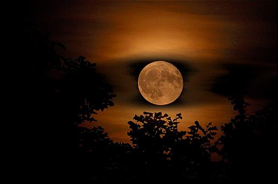 full_moon_by_hartmut_lerch