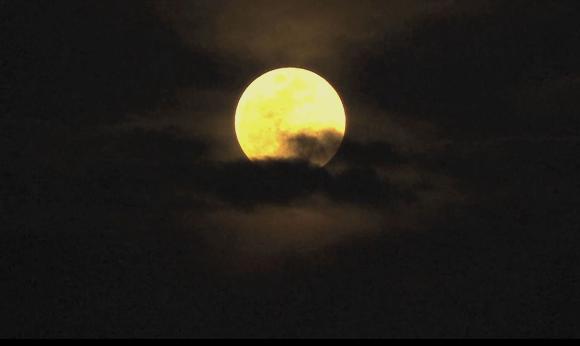 Screen Shot 2015-11-12 at 4.28.24 PM
